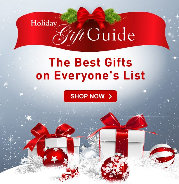 Holiday Gift Guide link